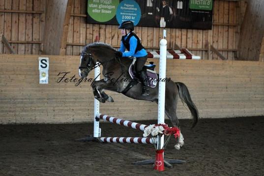 Hoppglad C-ponny sökes till ambitiös ryttare