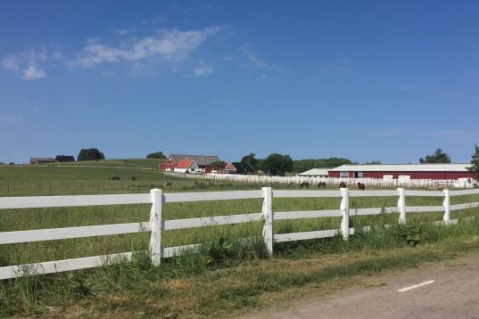 Lediga stallplatser 20min från Helsingborg
