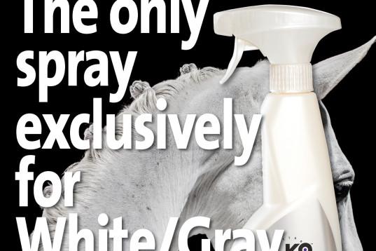 Världens enda Skimmel Spray