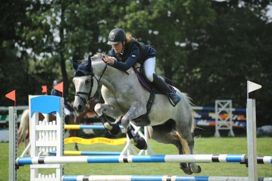 Ponny med storhästkänsla