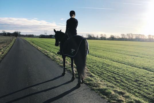 Medryttarhäst/ hästar sökes till två noggranna tjejer
