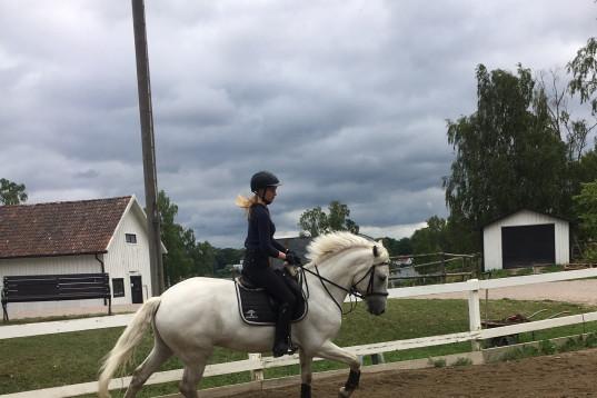 18åring söker medryttarhäst