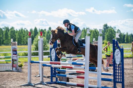 Välriden ponny med framtiden för sig