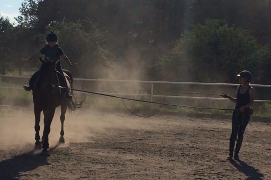 Medryttar-ponny sökes