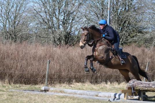 Hopphäst/ Fälttävlans häst