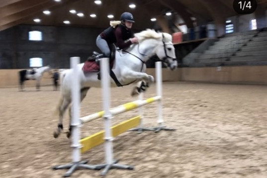 ponnyn med hjärtat på rätt ställe