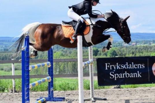 Explosiv D ponny med kapacitet