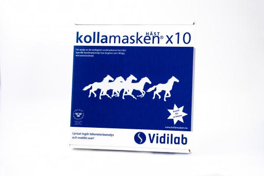 kollamasken 10 hästar