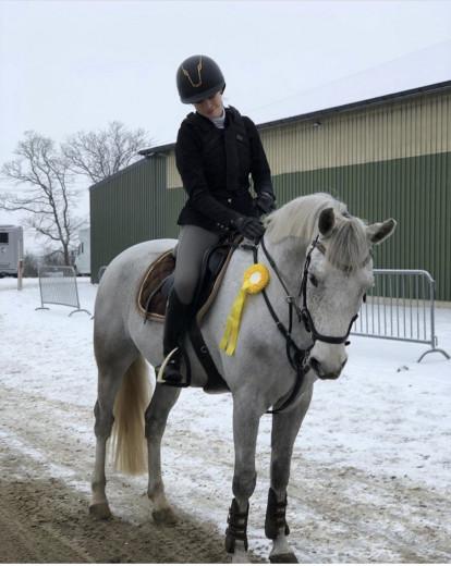 Underbar d-ponny
