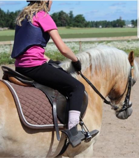 Mamma och dotter söker medryttar hästar!! (Haninge området)