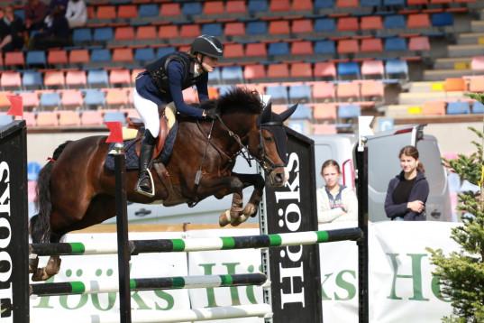 Rutinerad hopp-ponny efter Minotauros säljes