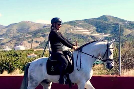 Andalusisk PRE drömkille!
