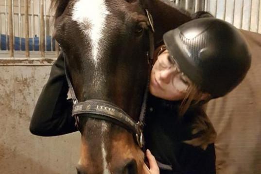 Söker häst att rida nån gång i veckan :)