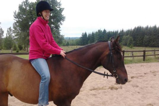 Söker häst för komplement till min egen som nu är gamal.
