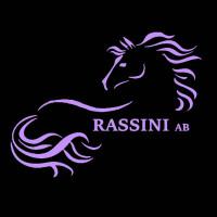 Rassini ABs profilbild