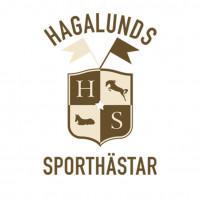 Hagalunds Sporthästars profilbild