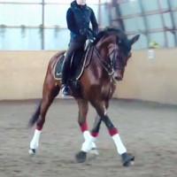 Mabs Horsess profilbild