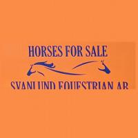 Svanlund Equestrian ABs profilbild