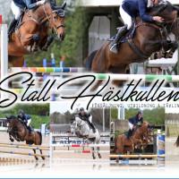 Stall Hästkullens profilbild