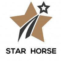 Star Horses profilbild