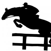 Västra ÅÅ Stuteris profilbild