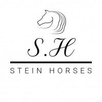 Stein Horses ABs profilbild