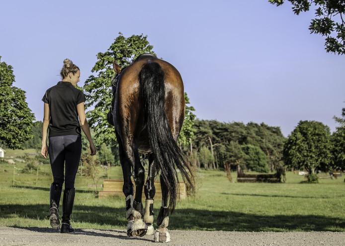 Ett med hästen