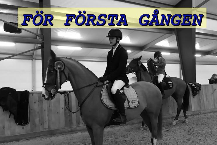 Zabrino hoppar för första gången mot storhästarna!