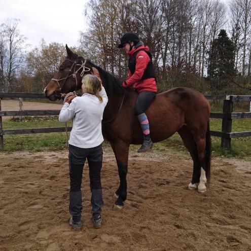 Inridning av hästar