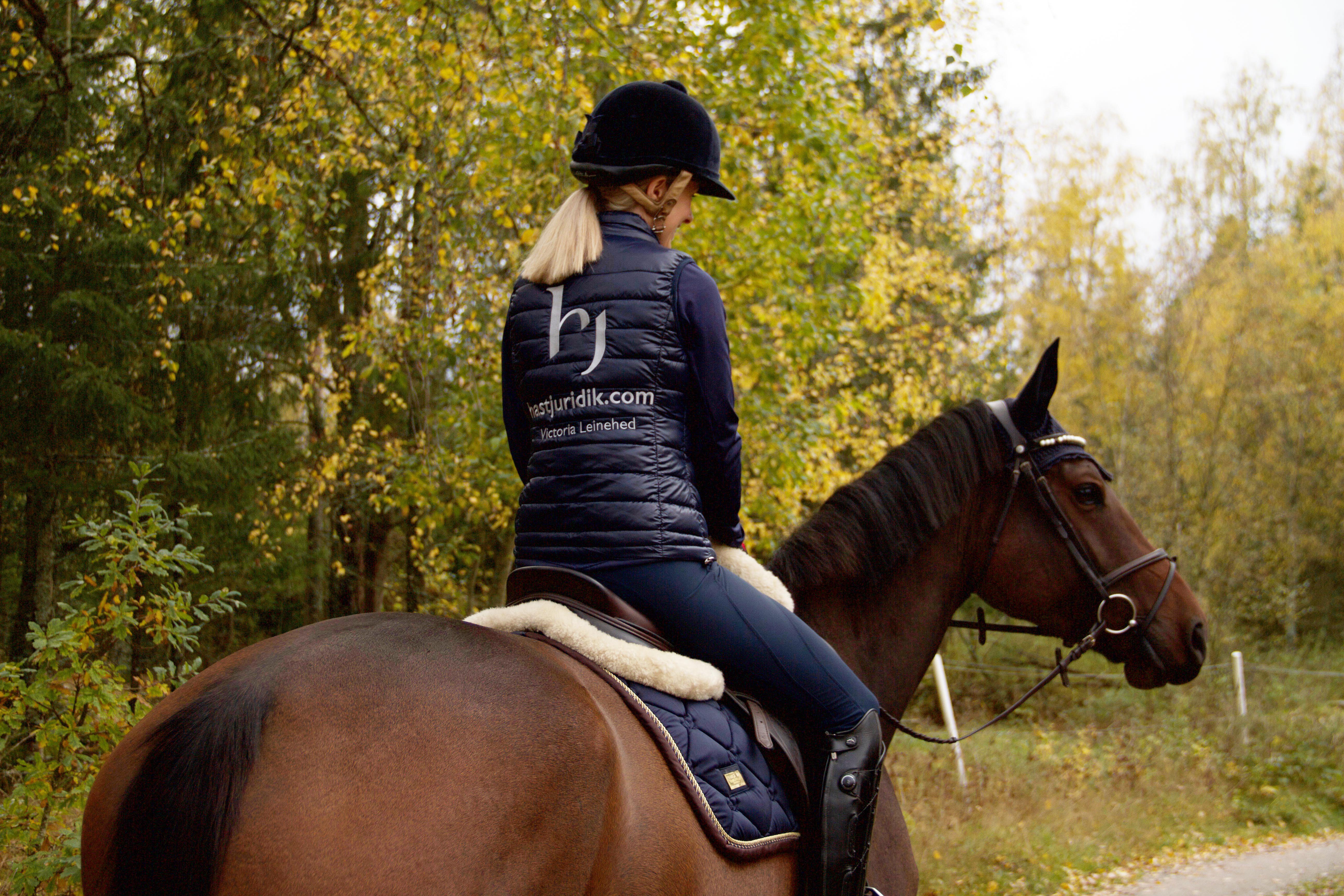 Varmt välkommen till min sida hos Hästlycka!