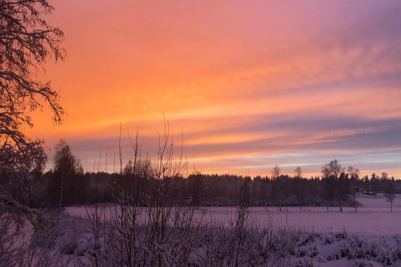 Norrländsk vinter