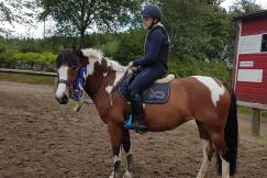 Veckans saluhäst: Ponny med ett hjärta av guld 💛